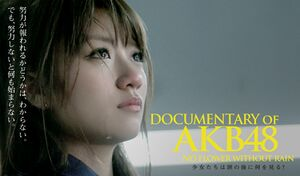 DOCUMENTARY of AKB48 No flower without rain.jpg