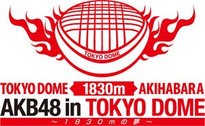 AKB48 in TOKYO DOME ~1830mの夢~.jpg